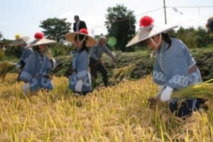 刈穂祭の写真