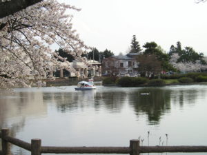 猿賀公園の写真